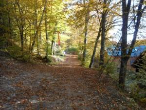 Traseu Sugas Trail Running