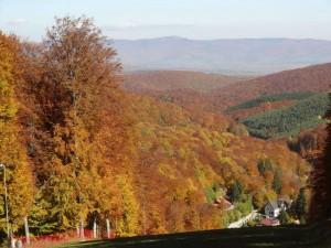 Varful partiei Sugas Trail Running